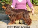 Cheery Queen Syrbianus_1
